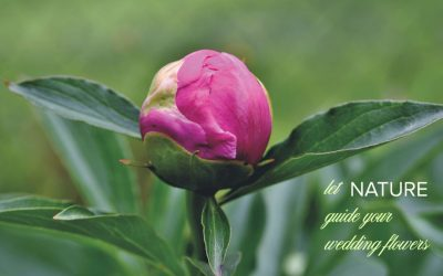 Let Nature Guide Your Wedding Flowers
